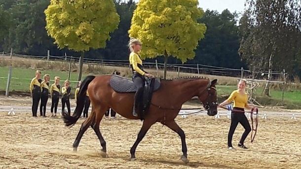 Voltigierpferd - Flotte Gymnastik auf dem Pferderücken