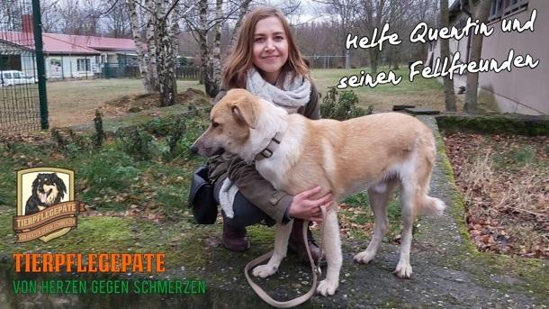 Helfe als Tierpflegepate Quentin und seinen Fellfreunden