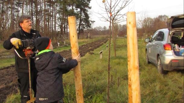 Bäume pflanzen, Zukunft pflanzen - eine Mitmach-Aktion