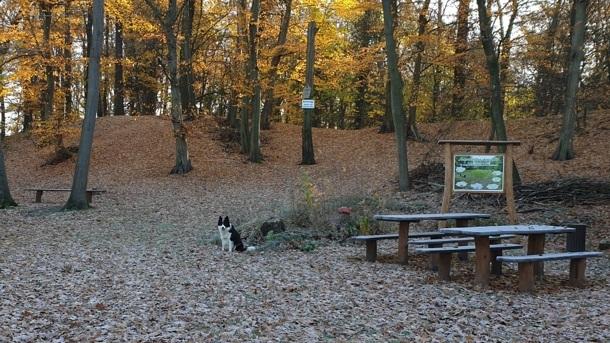 Bau Wetterschutzhütte im Burgwall Kosilenzien